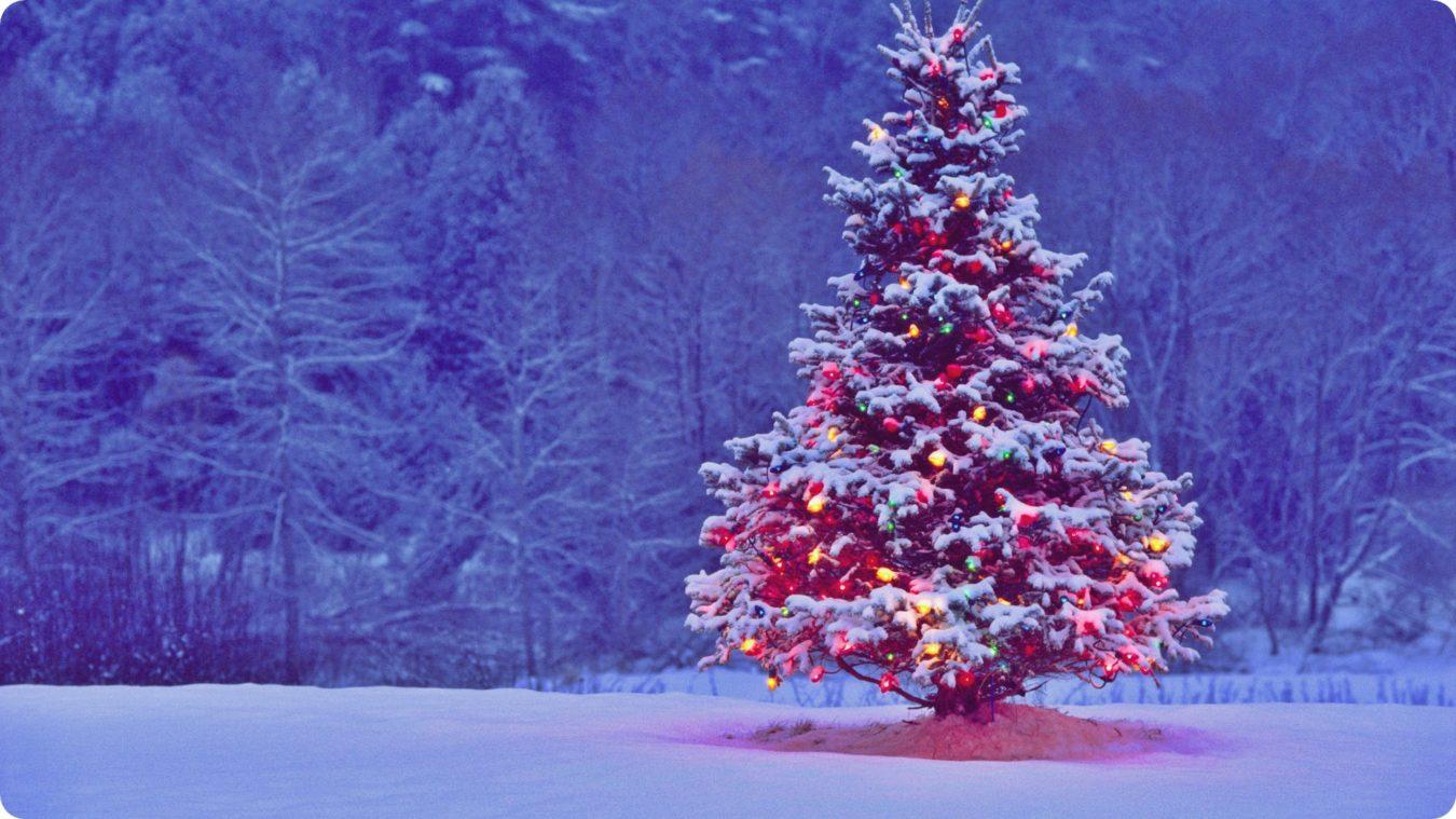 arbol-de-navidad-fondos-pantalla